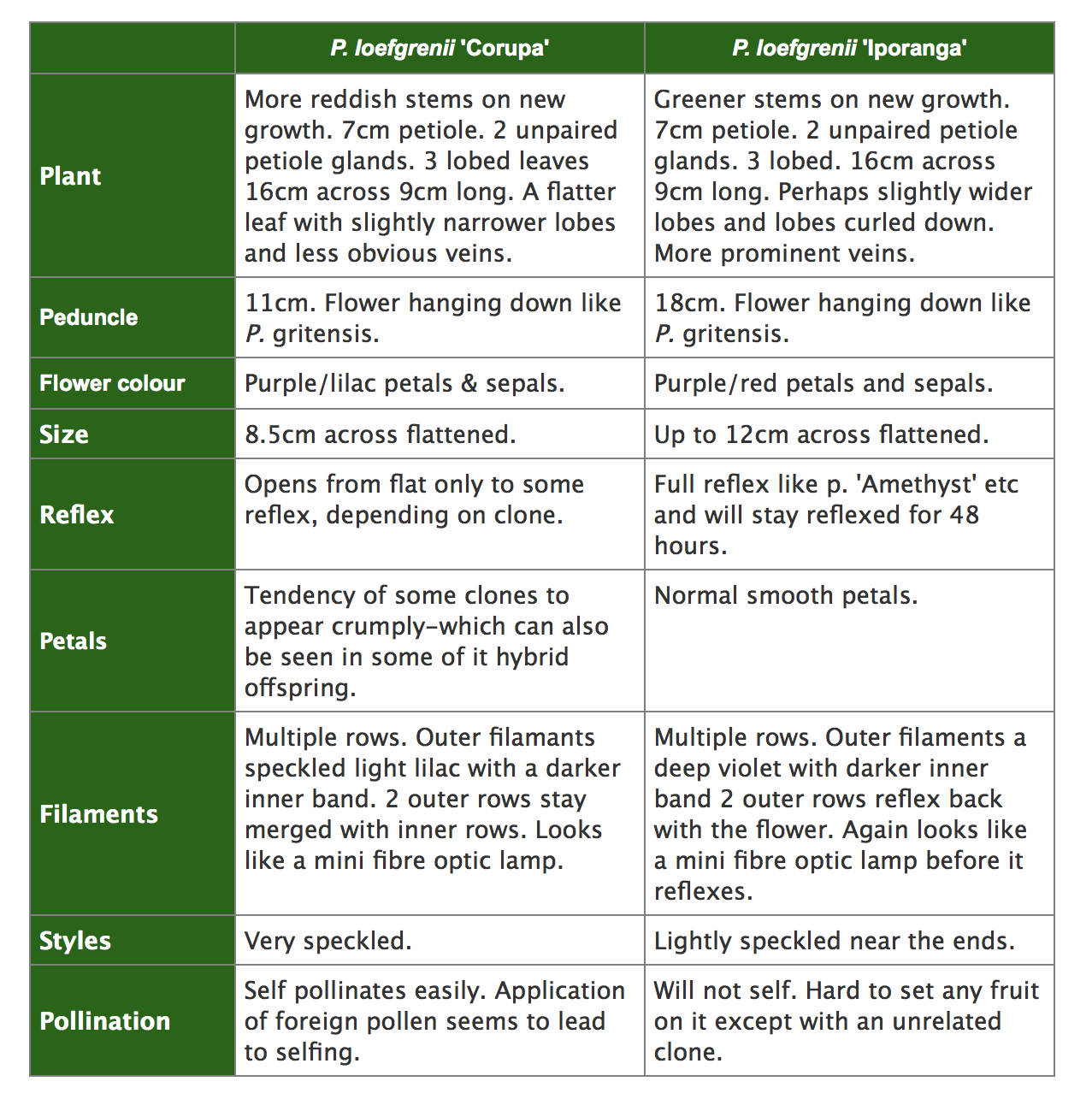 Passiflora loefgrenii Corupa Iporanga comparison table